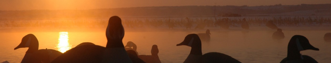 Squaw Creek Hunt Club – Mound City, Missouri – Guided Waterfowl Hunts – Ducks, Canada Geese, Snow Geese – All Inclusive – Lodging – 855-473-2875